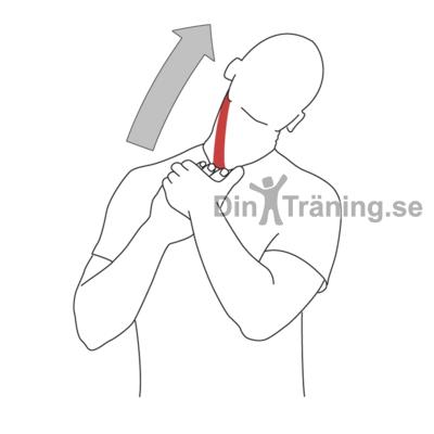 huvudvärk med yrsel